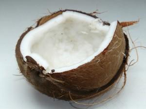coconut-60395_1280 (1)