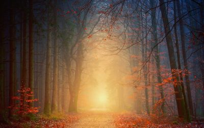 5 Steps to Finding Your Spiritual Path